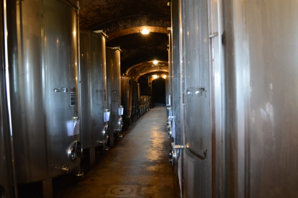 1707 - Contiki - Toscana e Wine Tasting (13)