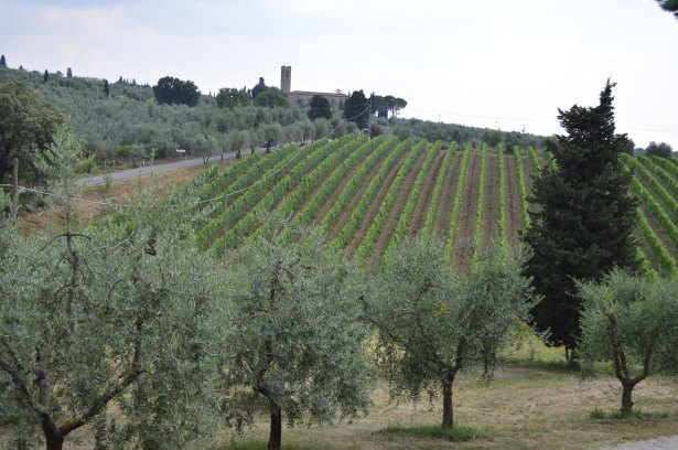 1707 - Contiki - Toscana e Wine Tasting (26)