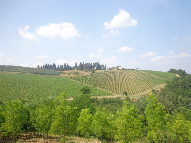 1707 - Contiki - Toscana e Wine Tasting (74)